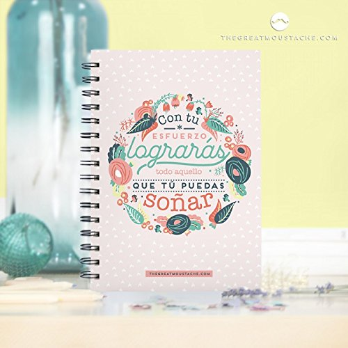 cuaderno mr wonderful
