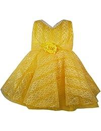 Jennygrace Baby Girl's Party Wear Frock Dress JGG-151