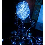 Blackberry Overseas Blue Colored Decorative RICE LED Lights, 15 metre Long