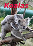 Koalas (Australian Wildlife Book 2)