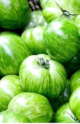 Seedeo Tomate Green Zebra (Lycopersicum esculentum) 30 Samen