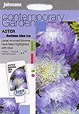 Johnsons Samen, Pictorial Pack Blume Aster Herzogin von Blue Ice 250 Samen