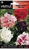 Semillas de Flores - Petunia Triumph