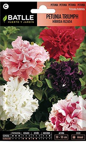 Semillas de Flores - Petunia Triumph híbrida rizada variada - Batlle
