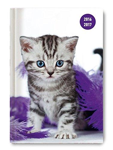 Alpha Edition Collegetimer 17073 Diario da Scuola Giornaliero per Anno 2016/2017