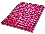 leichte Reise Daunendecke Travel rot 135/200 rosa 100% weisse Gänsedaune (beste Qualität)