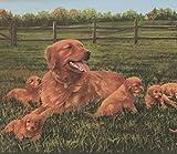RetroArt Hundewelpen im Bereich Extra breite Wallpaper Border Retro-Design auf dem Bauernhof, Roll-15' x 13,5 ''