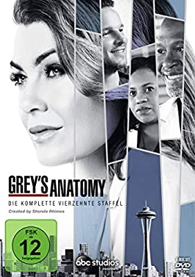 Grey's Anatomy: Die jungen Ärzte - Die komplette 14. Staffel [6 DVDs]