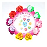 #1: Anokhi ADA Set of Multicolored Rose and Heart Tiny Claws For Girls (Set of 10)