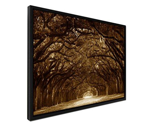 105-x-75-cm-tela-quadro-da-parete-colore-seppia-con-telaio-ombra-alberi-muschio-savannah-georgia