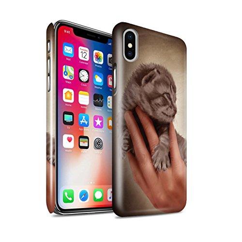 Offiziell Elena Dudina Hülle / Glanz Snap-On Case für Apple iPhone X/10 / Hyazinthe Muster / Die Tiere Kollektion Kitty/Erblicken