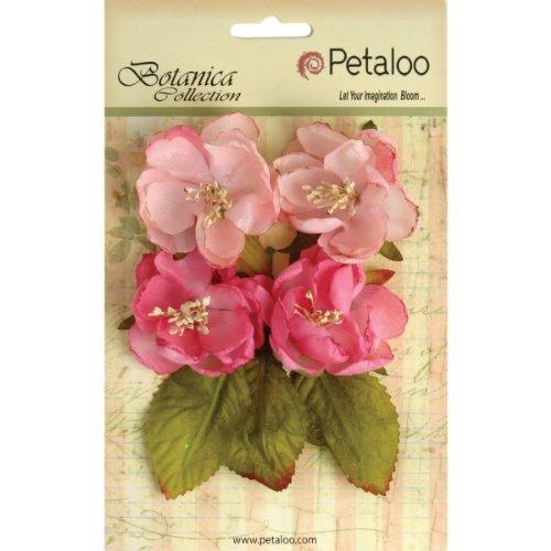 "Petaloo-Fiori di carta, motivo: ""Giardino Botanico, 2,25"", colore: rosa chiaro"