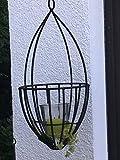 WMG | Catania Windlicht hängend Hängewindlicht Teelichthalter Laterne mit Glas | Frühling Frühlingsdeko | Metall Schwarz | H 45 cm D 20 cm
