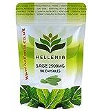 Salbei 2500mg (Sage) 2.5% Rosmarinsäure - 90 Kapseln