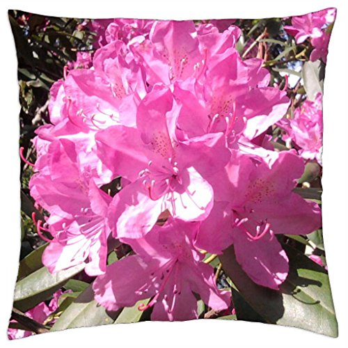 Abloom - Throw Pillow Cover Case (18\