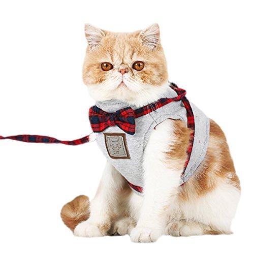 PETCUTE Katzengeschirr,Katze Weste Harness und Leine Set Verstellbare Atmungsaktives Katzengeschirr aus Weichem Air Mesh Gewebe