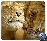 Spiel-Mäusematte, liebevolle Löwen personifizierte Rechteck-Mausunterlage, Gedruckte Rutschfeste Gummi-Bequeme kundengebundene Computer-Mausunterlage