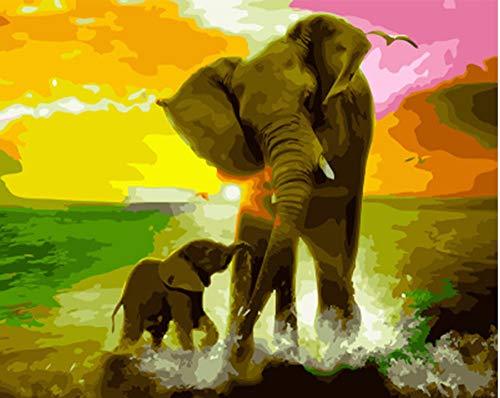Diy Ölfarben Bild Diy Malerei By Zahlen Malerei & Kalligraphie Von Schönen Tieren Elefanten Färbung By Zahlen Rahmenlose