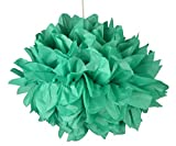 #9: Paper to Bag Dark Green Tissue Paper Pom Pom (Set of 2, Green)