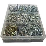 Assorted Screws and Nylon Plugs Set (Head +)