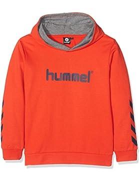 Hummel Sudadera con capucha niño y niña–Junior V Kess Hoodie AW17–Entrenamiento Sudadera manga larga–Sweater...