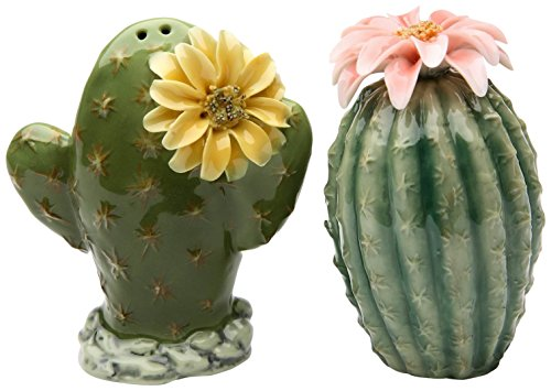 StealStreet ss-cg-208938cm bemalt Paar Kaktus Blumen Salz- und Pfefferstreuer - Kaktus Salz