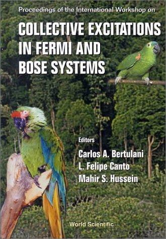Collective Excitations in Fermi and Bose Systems: Proceeding of the International Workshop, Serra Negra, Sao (Serra Liquid)
