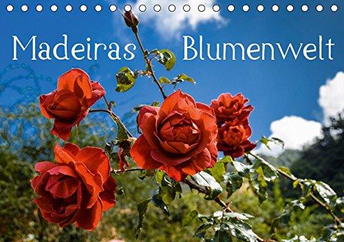 Madeiras Blumenwelt (Tischkalender 2019 DIN A5 quer): Wunderschöne Blüten Madeiras im Herbst (Monatskalender, 14 Seiten ) (CALVENDO Natur)