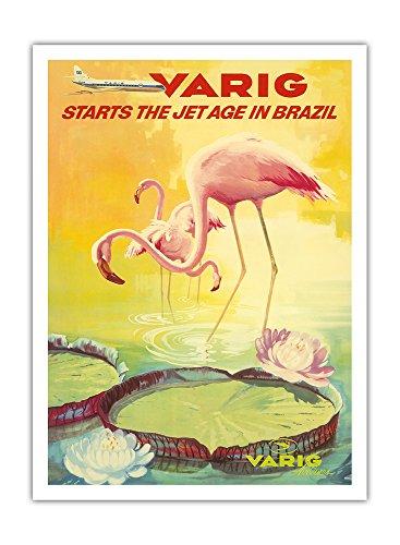 brazil-varig-starts-the-jet-age-in-brazil-pink-flamingos-flamingo-rosados-wade-in-a-lily-pond-variq-