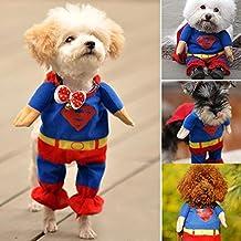 DIGIFLEX Haustier Superman Kostüm, Superhelden - Fasching/Fastnacht, Halloween - Outfit für kleine Hunde oder Katzen bis 25cm Hals