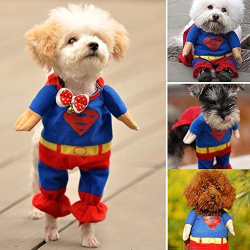digiflex-deguisement-costume-de-super-heros-pour-animal-domestique-chien-chat-halloween-petit-col-98