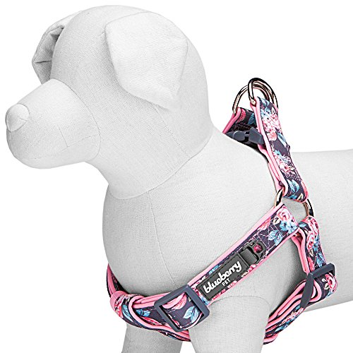 Blueberry Pet Step-in Rosy Prints Girly Adjustable No Pull Neoprene Pa