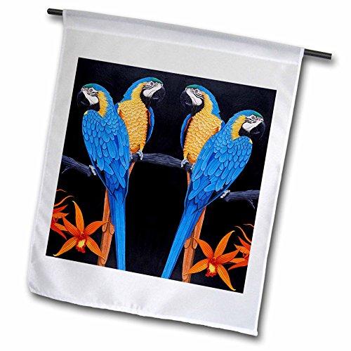 Und Ara Blau Gold (3dRose FL 3213_ 1blau gold Aras Garten Flagge, 12von 18)