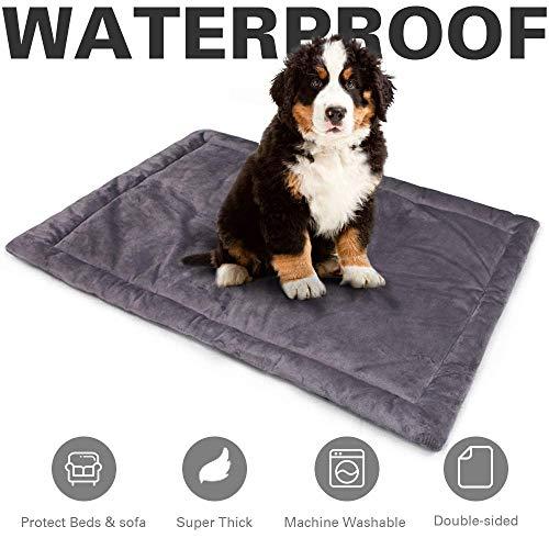 Allisandro Hundematte Rutschfeste Hundedecke 80 x 60 cm, 100 x 70 cm Hundekissen In und Outdoor Wasserdichte Decke Waschbar Micro Plüsch Oberfläche Grau