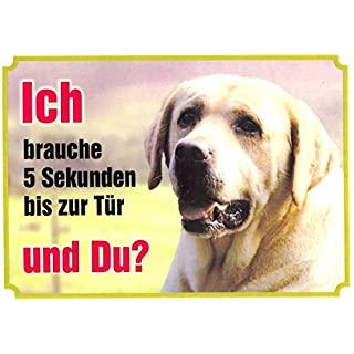 AkaPit Warnschild Warnschild Labrador, Hellbraun 005 ca. 21 x 15 cm laminiert wasserabweisend Motiv : Ich Brauche 5 Sekunden bis zur Tür und Du ? Verwendbar im Innen und Außenbereich