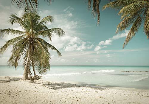 Forwall Fototapete Vlies Wanddeko Strand Meer - Sand Sommer Palmen Sonne Vliestapete Wand Tapete Moderne Wohnzimmer Schlafzimmer Wanddekoration 13347V8 368cm x 254cm