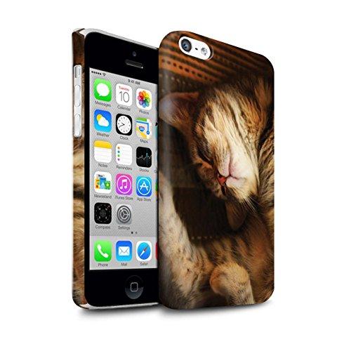 Officiel Elena Dudina Coque / Clipser Matte Etui pour Apple iPhone 5C / Jacinthe Design / Les Animaux Collection Endormi/Tigré Chat