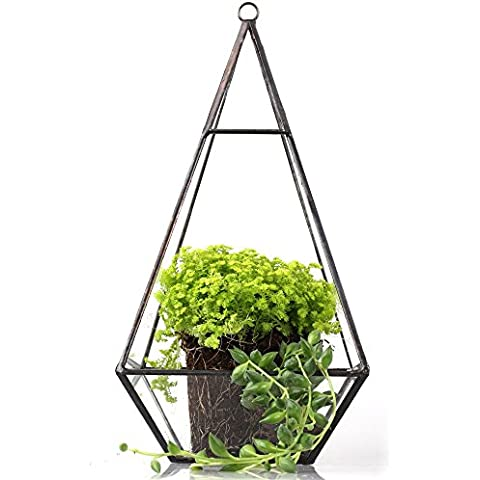 Colorato, da appendere, a forma di piramide, in vetro, forma triangolare, design moderno, motivo terrari da tavolo per piante succulente, motivo: felce, colore: verde muschio, vaso, altezza 24 cm, colore: trasparente