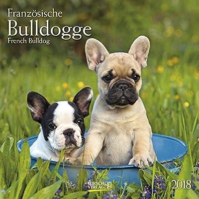Französische Bulldogge 2018: French Bulldog. Broschürenkalender Mit Ferienterminen