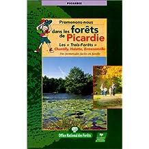 Forêt de Picardie, N° 16