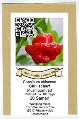 Höllisch scharfes, rotes Chili in Pilzform - Mushroom red - 20 Samen von exotic-samen bei Du und dein Garten