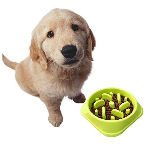 Lezed Langsame Fütterung Hundenapf Katzennapf,Interactive Feed Schüssel,Anti-Schling-NAPF,Slow Down Essen,Umweltfreundlicher, Durable,Gewichtsverlust Helfen Verdauung Haustier Geräte(Grün)