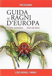 I 5 migliori libri sui ragni