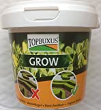 TOPBUXUS GROW, 500g for 10m2 Boxwood, no yellow leaves, do what the grower does!
