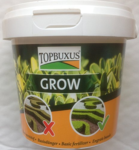 topbuxus-grow-500g-for-10m2-boxwood-no-yellow-leaves-do-what-the-grower-does