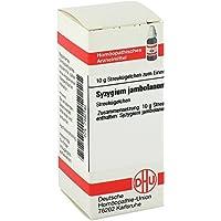 SYZYGIUM JAMBOLANUM D 2 Glob 10 g Globuli preisvergleich bei billige-tabletten.eu