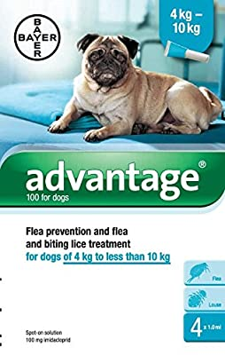 Advantage Flea Control - 100 Medium Dogs 4-10kg - 4 Pipettes