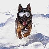 Cutepet Sonnenschutz Brillen Schutzbrillen Haustier Hund UV-Sonnenbrille Schutz Sonnenbrille Hundebrille Geeignet Für Mittelgroße Groß Hunde Haustier Eye Schutz GH-07863