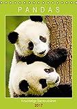 Pandas: Knuddelige Bambusbären (Tischkalender 2017 DIN A5 hoch): Veganes Raubtier und Marken-Botschafter für den WWF (Planer, 14 Seiten ) (CALVENDO Tiere)