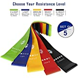 Hale Resistance Exercise Loops Workout Bands for Home Fitness, Stretching and Physical Therapy, 12-inches - Set of 5,